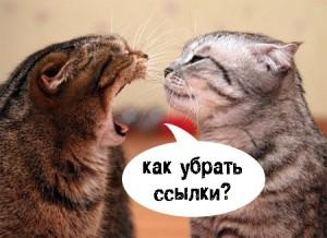 кошки орут друг на друга